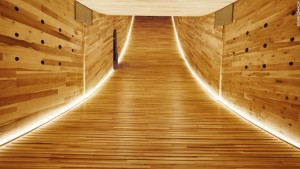 "Lined with the same tulipwood panels as the exterior, the interior of ""The Smile"" was illuminated at night with strip lighting that emphasizes its curving form. Photograph courtesy Alison Brooks Architects"