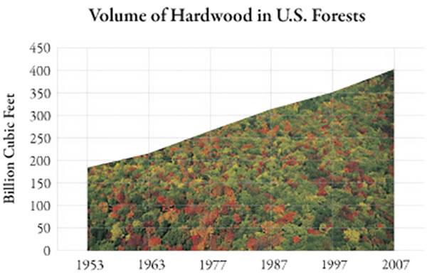 American Hardwoods Renewable Abundant And Sustainable