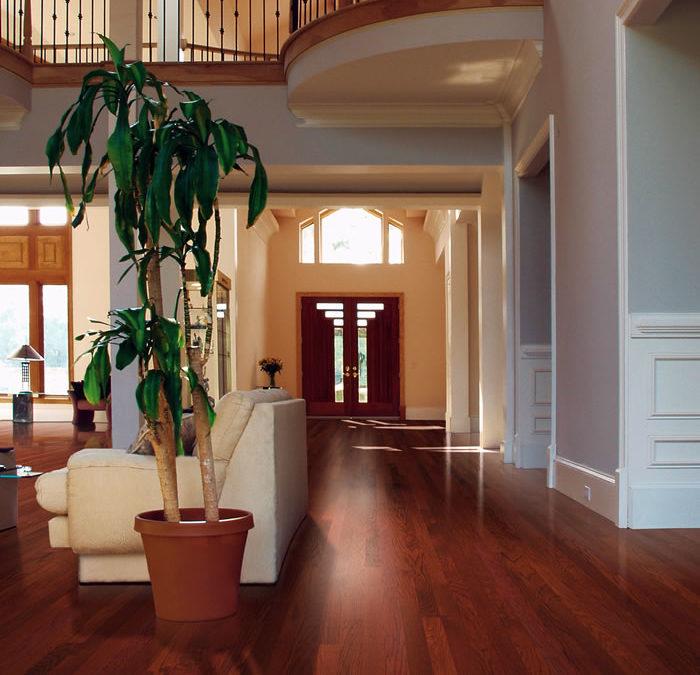 Keeping hardwood floors looking beautiful is easier than you think.